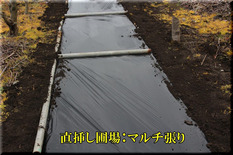 1sasihijyou200127_001.jpg