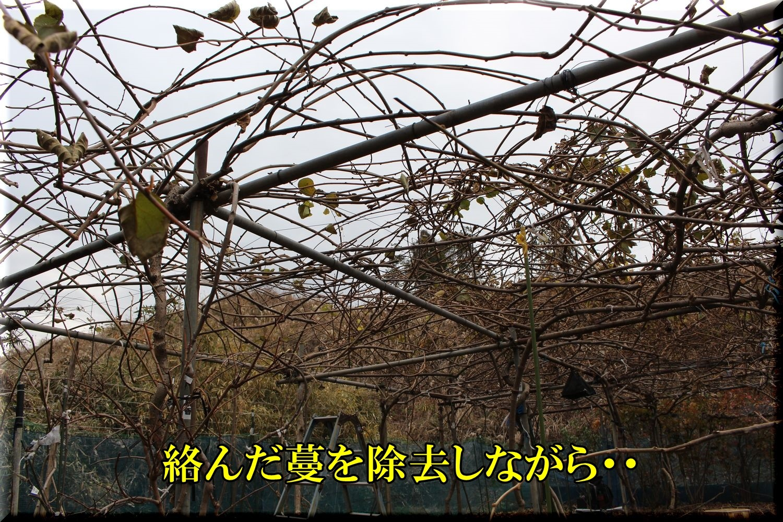 2after200107_020.jpg