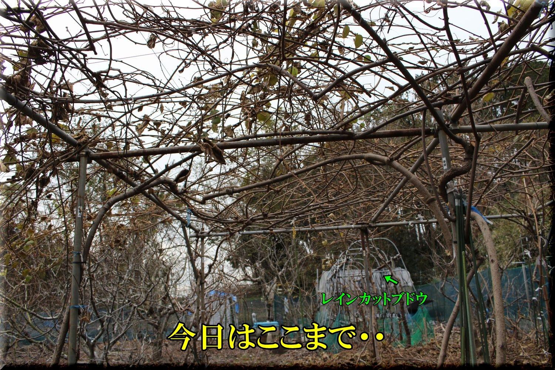 2after200107_024.jpg