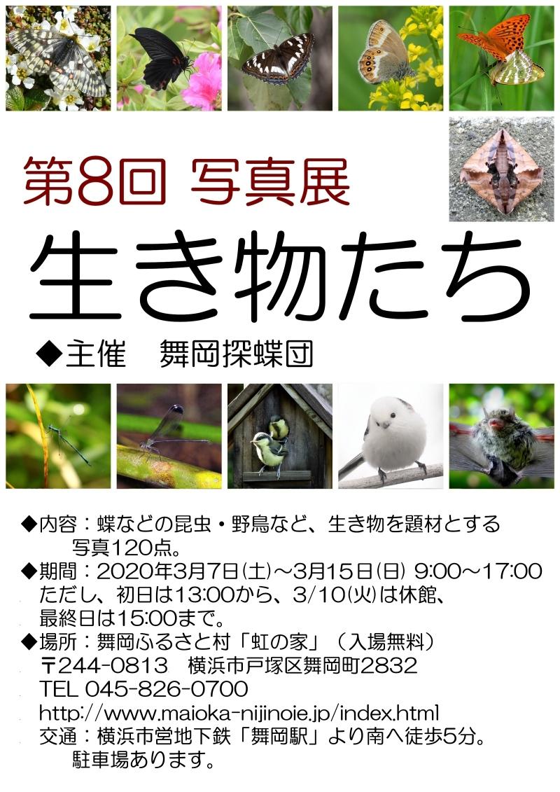 800-★2020ポストカード