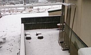snow@202002060001.jpg