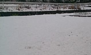 snow@202002070001.jpg