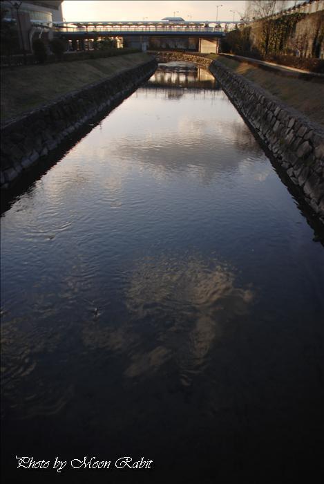 松山中央公園(坊っちゃんスタジアム) 愛媛県松山市市坪西町
