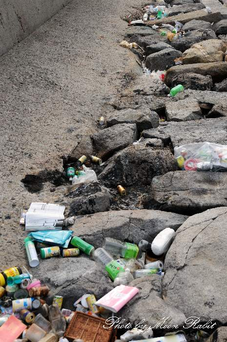 プラスチックゴミ 愛媛県西条市西ひうち