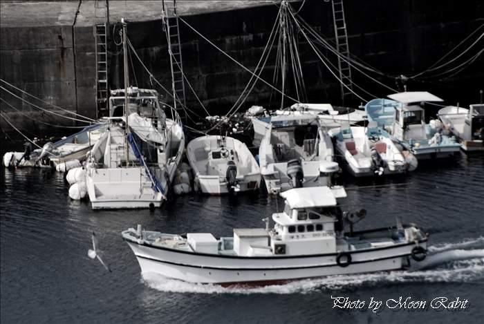 漁船 下灘漁港(豊田漁港) 愛媛県伊予市双海町下灘