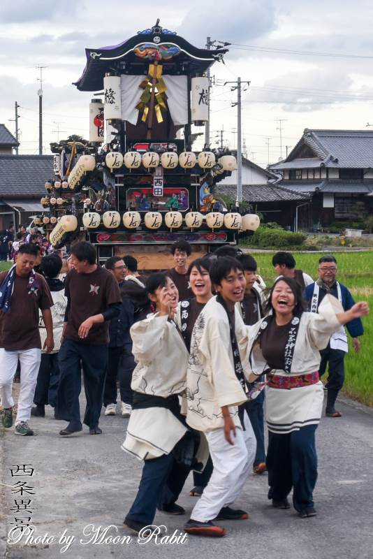 橘新宮神社祭 西田だんじり(屋台)