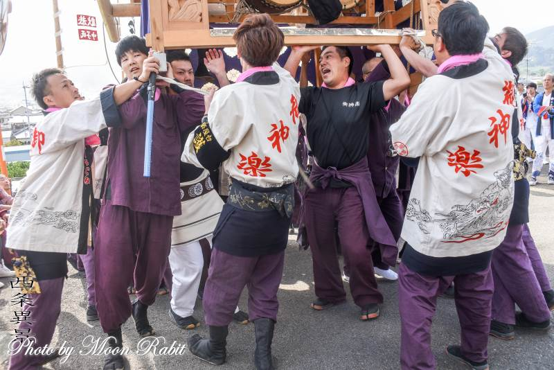 土居御神楽だんじり(土居屋台) 法被 祭り装束 石岡神社祭礼