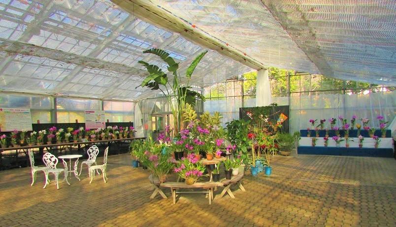 greencenter200103-111.jpg