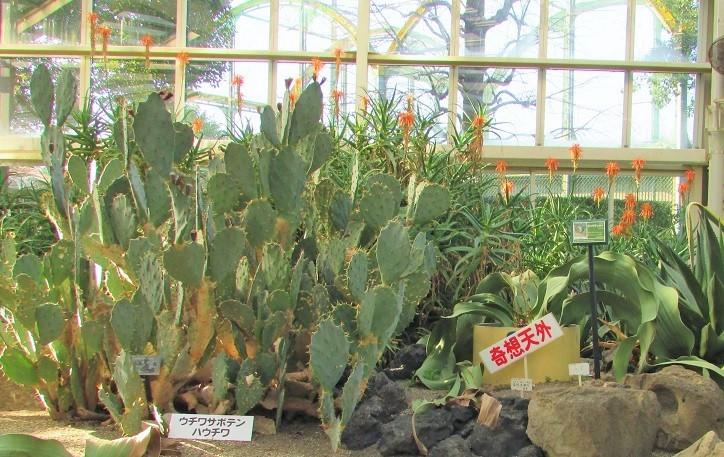 greencenter200103-115.jpg