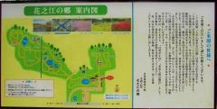 hananoe200126-201.jpg