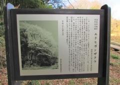 kitamoto200105-203.jpg