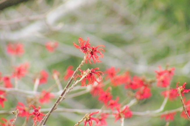 minuma200208-104.jpg