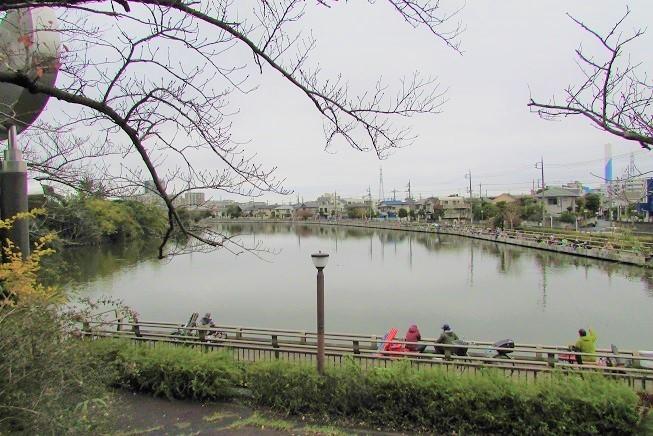mizumoto191124-133.jpg