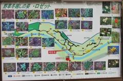 nogawa200104-201.jpg