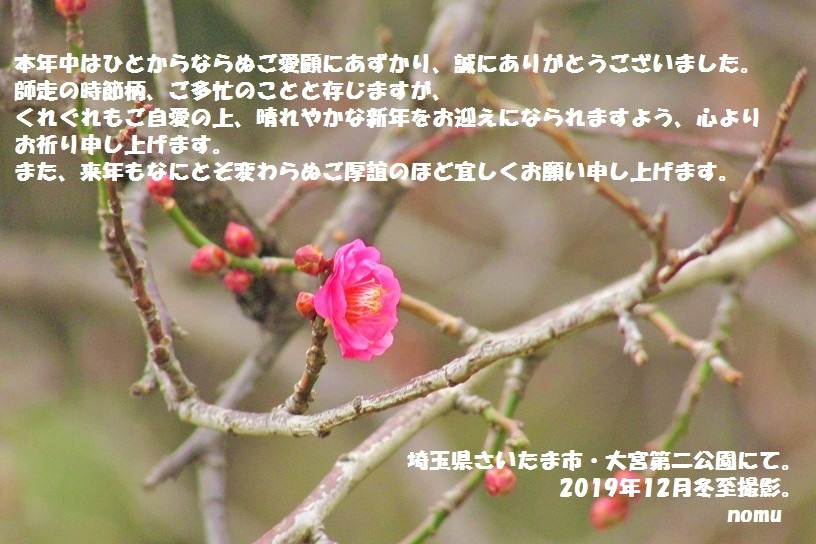 oomiyadaini191222-109.jpg