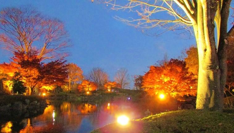 sakurayama191117-105.jpg