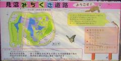 shibakawa200211-201.jpg