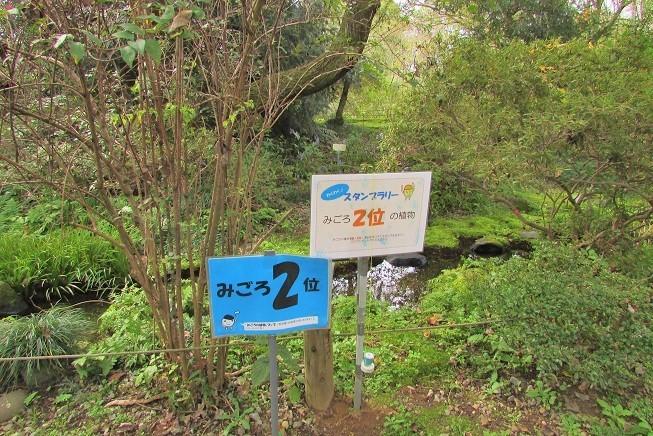 tukuba191103-134.jpg