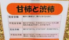 tukuba191103-203.jpg