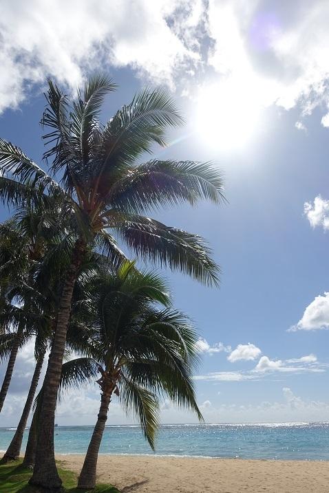 ハワイ海1