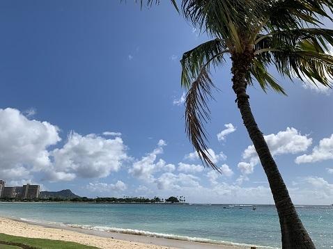 ハワイ海E