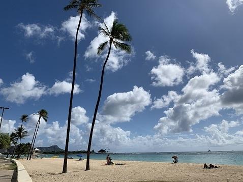 ハワイ海D