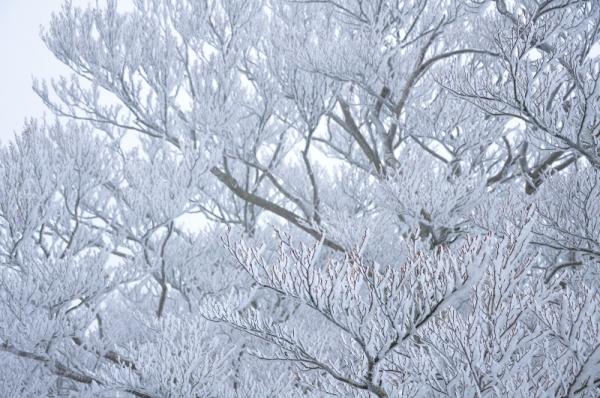 6寒風山191203