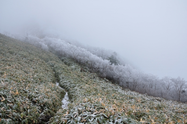4寒風山191203
