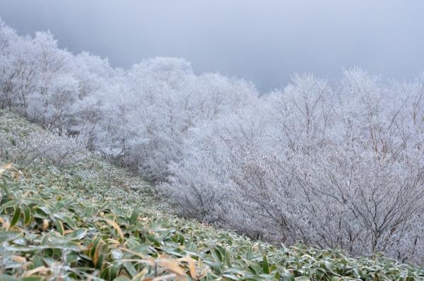 2寒風山191203