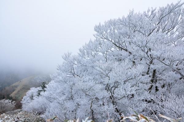 1寒風山191203
