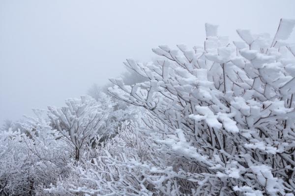 9寒風山191203