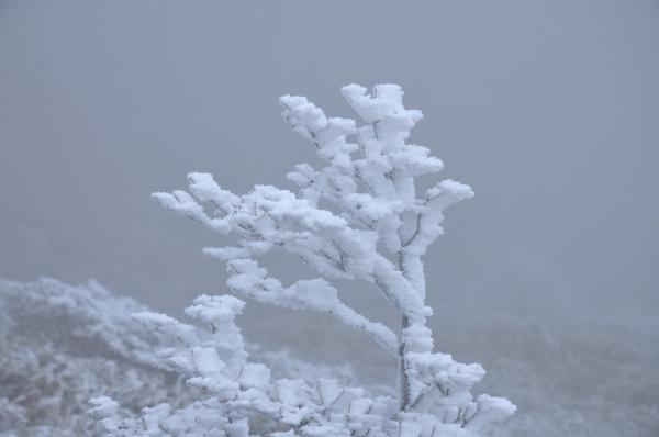 10寒風山191203