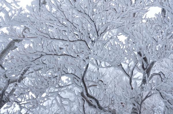 8寒風山191203