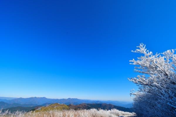 7中津明神山191208