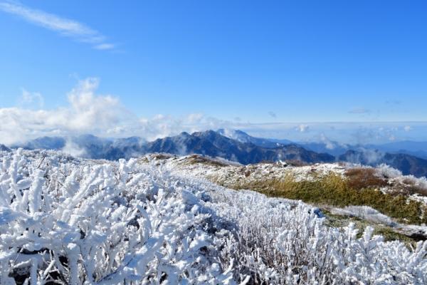 3笹ヶ峰200118