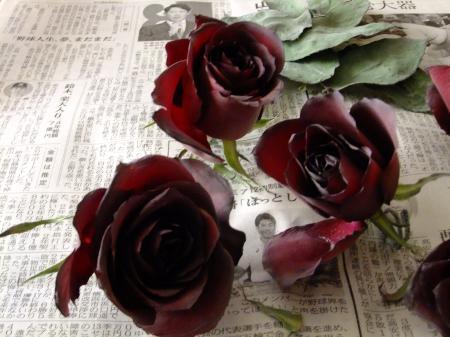 花束ブログ4