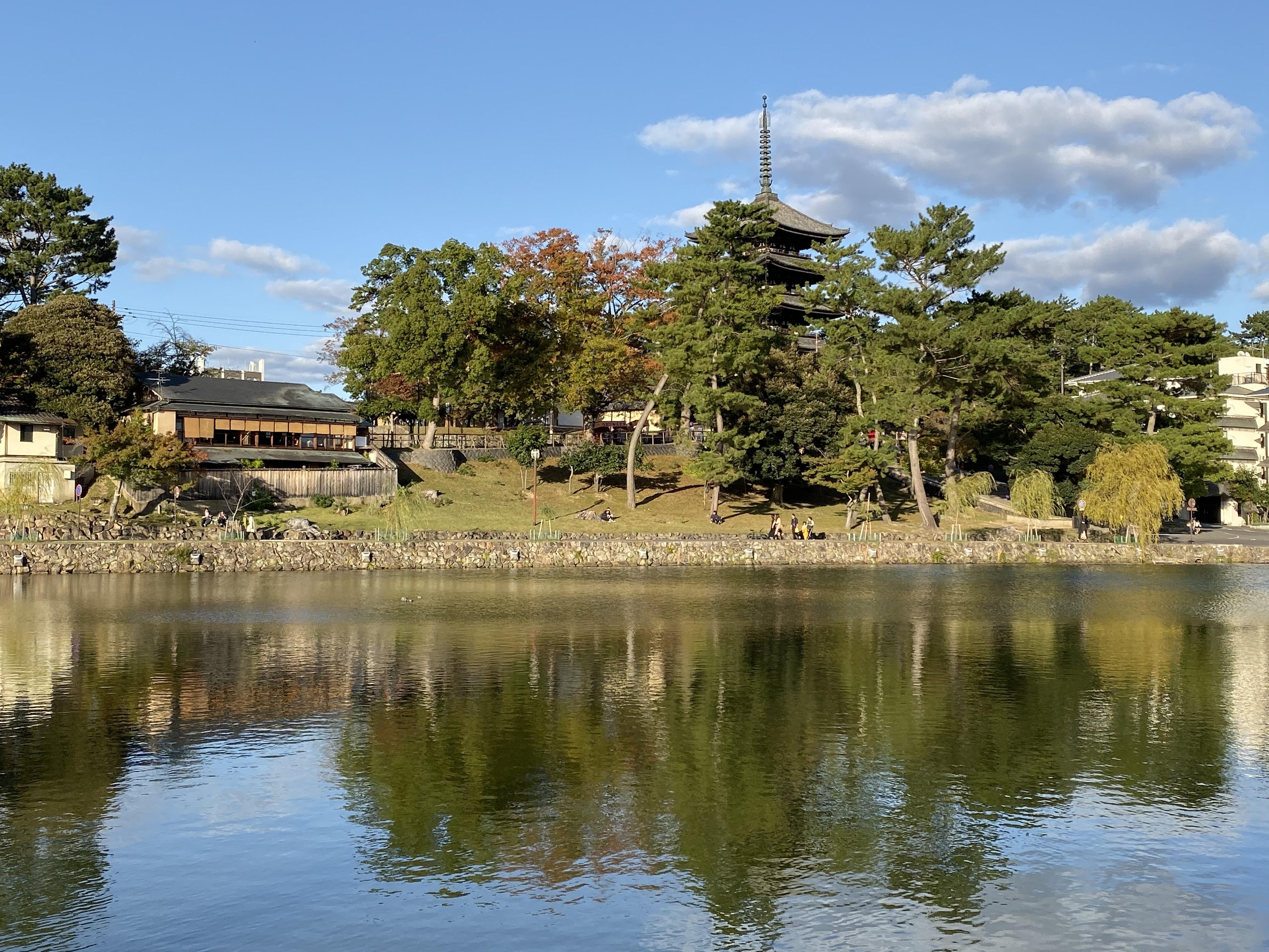 奈良猿沢の池